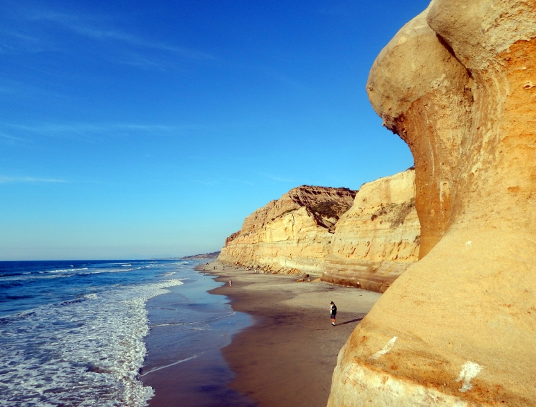 Torrey Pines State Beach 1.13.15 Photo by SJF Communications